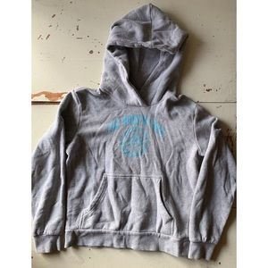 The north face :: grey pullover hoodie